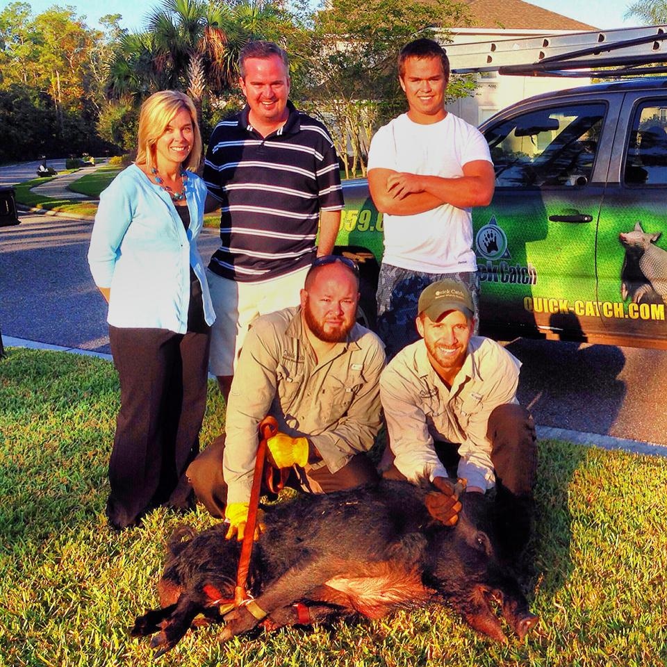 Florida Hog Removal