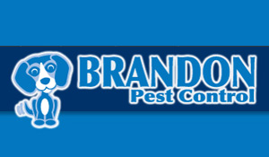 Brandon Pest Control